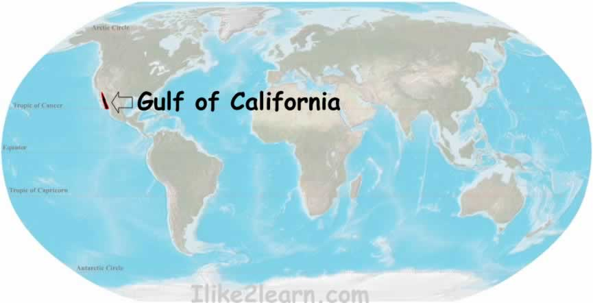 Gulf Of California Map.Gulf Of California