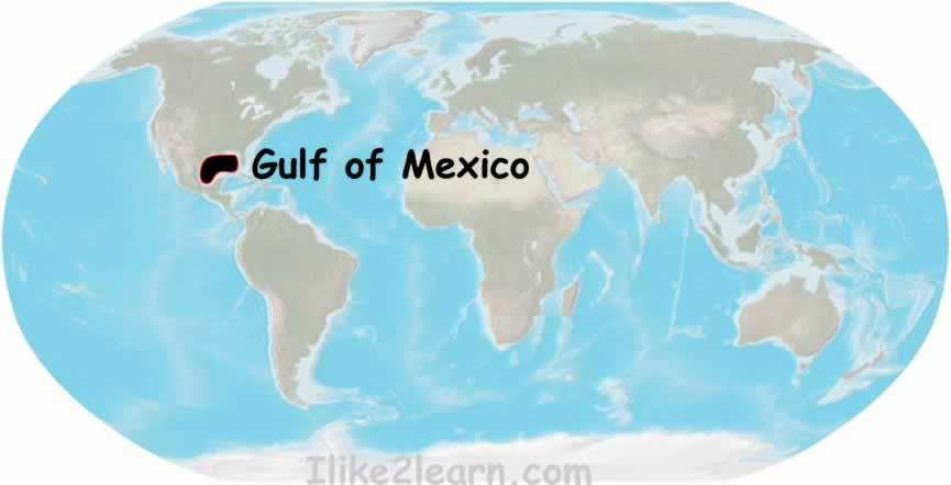 World Map Mexico. Gulf of Mexico Map