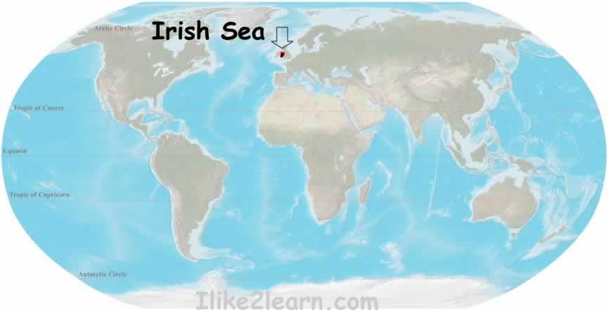 Irishseag gumiabroncs Images
