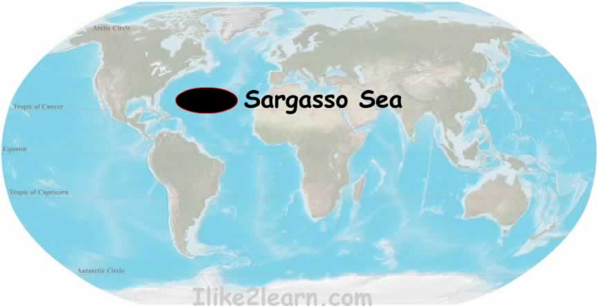 Sargasso Sea On World Map.Sargasso Sea